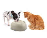 ciottoli_pet_fountain_cat_and_dog