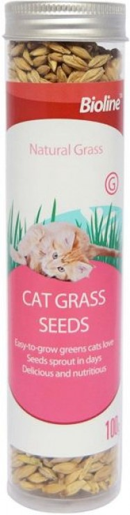Bioline Cat Grass Seeds