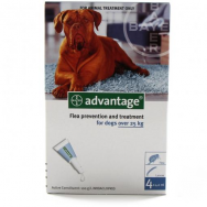 advantage-dog-4002